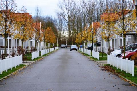 Фото Коттеджный поселок, Бельгия. Материал: Фиброцементный сайдинг Cedral | . Фото № 1619229974